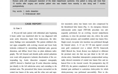 SEAL Flex case report(Flex TEVAR)