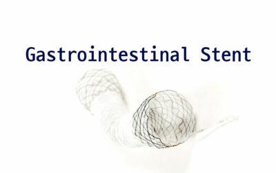 Gastrointestinal Stent
