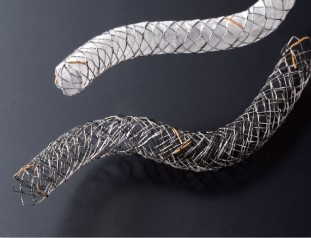 Case_Biliary Stent Braided 6 (Japan)